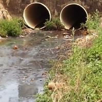 Dejetos do Mané Falado seguem diretamente para o Rio Araguaia. [Foto: Brenda Carvalho]